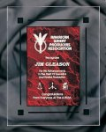 Red Marble Acrylic Award Recognition Plaque Achievement Awards