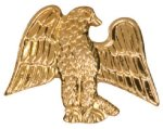 Gold Eagle Metal Chenille Letter Insignia Lapel Pins